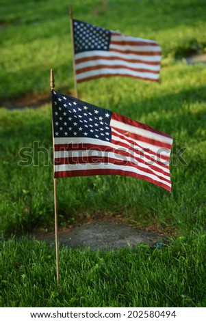 American flags in cemetery - stock photo