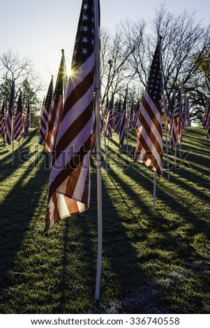 American flags with sun flare and long shadows early on an autumn morning three days before the Veterans Day federal holiday - stock photo