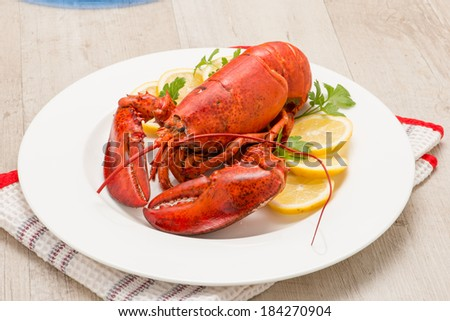 American lobster - stock photo