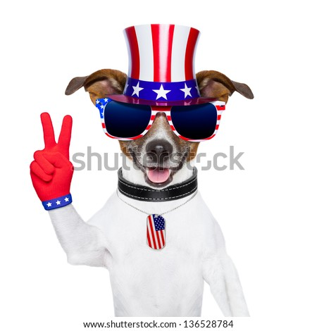 american peace dog with victory fingers gloves - stock photo