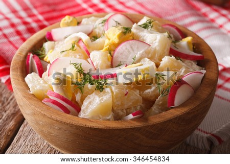 American potato salad with radish and mayonnaise close-up on a plate. horizontal