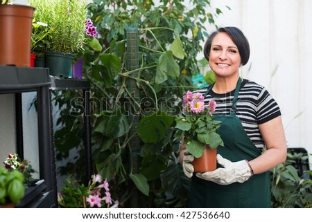 american woman florist holding a pot with a flower in the gardening counter - stock photo