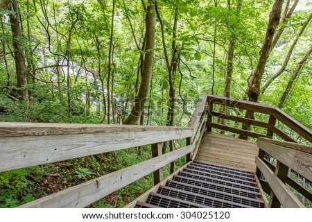 Amicalola Falls, viewed from the staircase in the surrounding forest, in Georgia's State Park. - stock photo