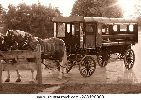 amish carriage - stock photo