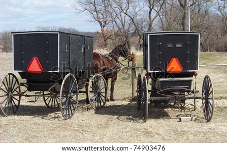 Amish Horse and Buggys