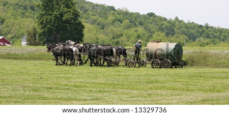 Amish Spreading Fertilizer with a team of 8 Horses - stock photo