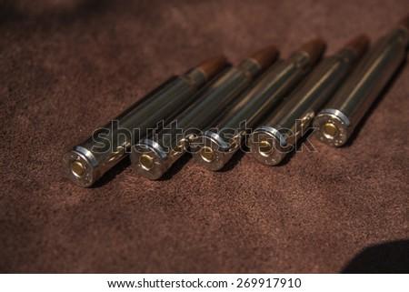 Ammunition on the skin - stock photo