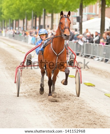 AMSTERDAM - JUNE 1: Unidentified driver and her horse participate in the annual short distance horse race held in the van der Pek street of the city, June 1, 2013,  Amsterdam, The Netherlands - stock photo