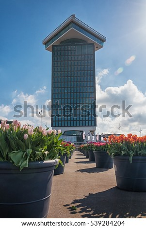 Amsterdam, Netherlands, April 10, 2016: planters filled with tulips  during the Tulip Festival in Amsterdam with on the background the Amsterdam tower.