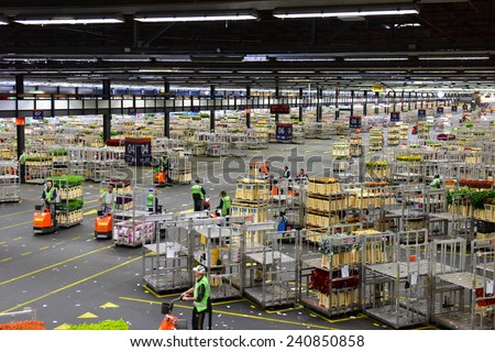 AMSTERDAM - SEPTEMBER 22: Carts of flowers being sorted and moved at Aalsmeer FloraHolland, taken on September 22, 2014 in Amsterdam, Netherlands - stock photo