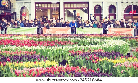 AMSTERDAM, THE NETHERLANDS - JAN 17, 2015: City natives and tourists check free tulips during annual National Tulip Day at the city's Dam Square. Filtered toned image in instagram style.  - stock photo