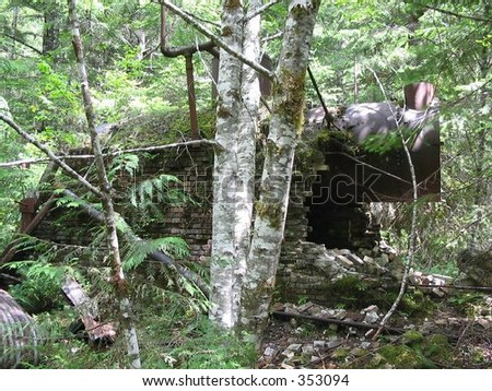 An abandoned boiler from an old mining operation deep in the Willamette National Forest. - stock photo
