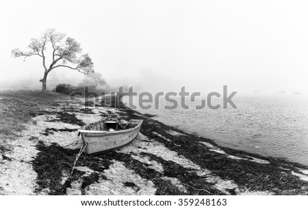 An abandoned fishing boat left on the beach. Black and white coastal scene with silhouetted tree and old boat. Bailey Island, Maine, USA