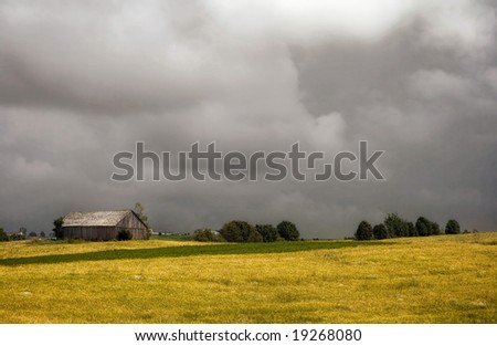 An abandoned shed in a wheat field - stock photo