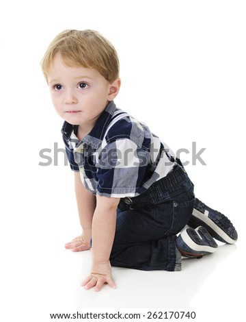 An adorable little boy kneeling while looking up.  On a white background. - stock photo