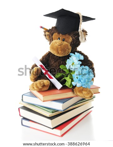 An adorable toy monkey graduate sitting on a stack of books with his diploma, a grad cap, pencil in his ear and bouquet of blue flowers.  On a white background. - stock photo