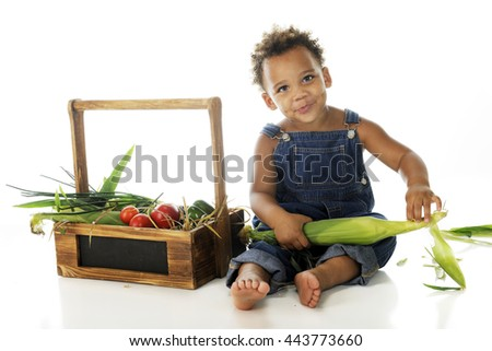 An adorable 2-year-old happily husking corn by his basket of veggies.  On a white background.