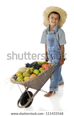 An adorable young farmer pushing a wheelbarrow full of assorted fruit.  On a white background. - stock photo