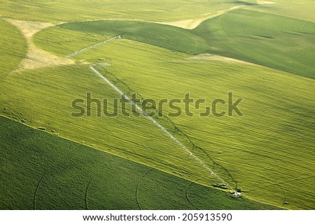 An aerial view of an agricultural sprinkler in a potato field - stock photo