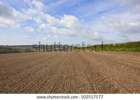 an agricultural landscape with newly cultivated chalky soil on a hillside in the yorkshire wolds england under a blue cloudy sky