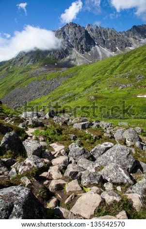 An alpine ridge in full summer greenery - stock photo