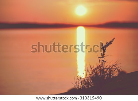 An amazing sunset by the sea. Image taken in Finland during summer evening. Image has a vintage effect applied. Some grass is acting as a silhouette in the right hand side. Plenty of room for text. - stock photo