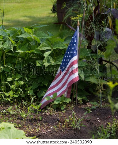 An American flag is planted in a garden in Canada, symbolic of the gardeners heritage. - stock photo