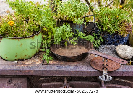 An antiques rusted cast iron stove with a frying pan and plants on top.