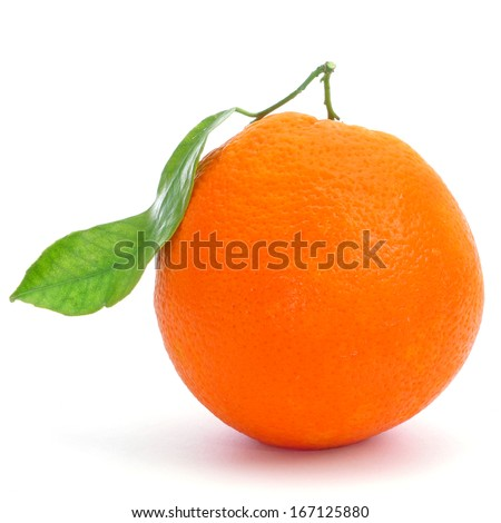 an appetizing orange on a white background