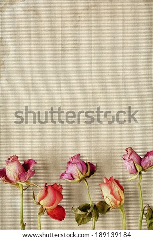 An arrangement of dried flowers on the bottom or side of the frame. - stock photo