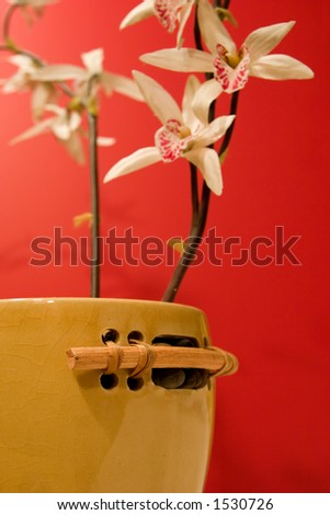 An Asian tranquil scene with shallow depth of focus.  Focus is on bamboo pot handle for foreground focus. - stock photo