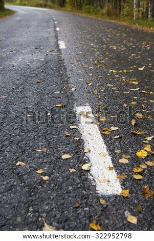 An asphalt road during autumn time. A lot of leaves are lying on the wet surface which makes road very slippery. Some white stripes are in the street. Image has a vintage effect applied. - stock photo
