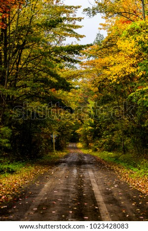 An autumn morning spent driving along dirt and gravel roads in the Finger Lakes National Forest in central upstate New York.