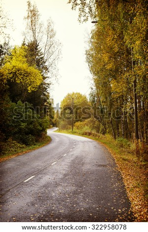 An autumn road. The road is wet after the rain and wind has blown birch leaves to the asphalt. The road is slippery. Image has a vintage effect applied.