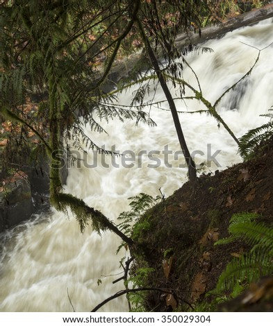 An autumn view of the Cedar Creek near the old Grist mill outside of Woodland, Washington. - stock photo