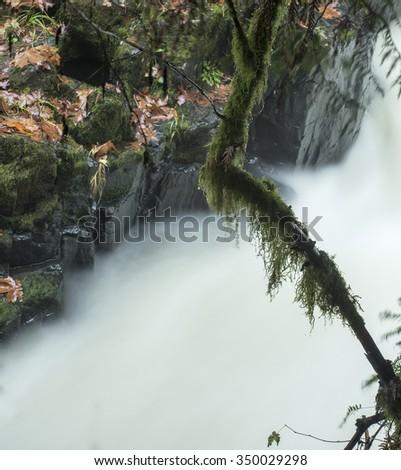 An autumn view of the Cedar Creek outside of Woodland, Washington. - stock photo