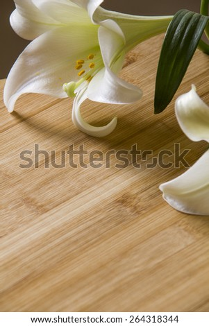 An easter lily on a Wooden background. - stock photo