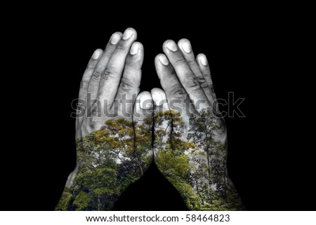 An eco friendly pair of hand projecting a rainforest tree top symbolizing environmentally aware human touch.