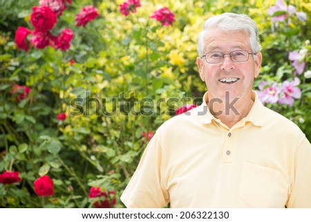 An elderly man is looking expectantly at the camera in front of beautiful rose bushes - stock photo