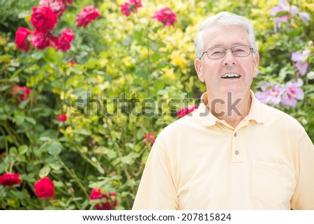An elderly man is smiling up and into the camera with a beautiful rose background - stock photo