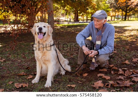 An elderly man looking his pet dog in the park
