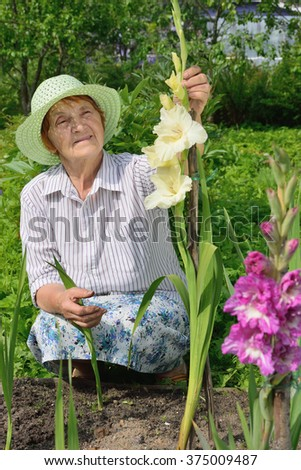 An elderly woman near large gladioli on the plot