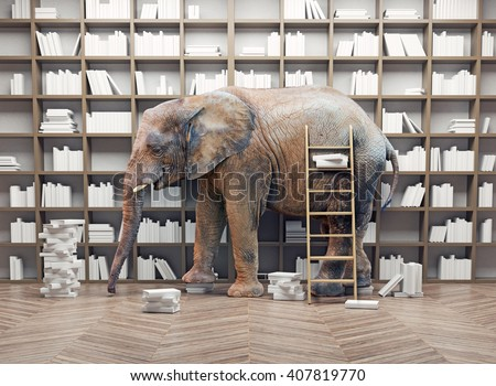 an elephant  in the room with book shelves. Creative concept - stock photo