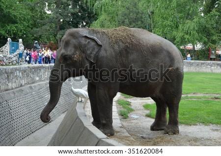 malerlampe elephant thai massage horsens