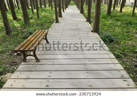 An empty chair on boardwalk in the forest - stock photo