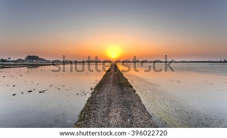 An empty dirt road though the rice field plantation towards the setting sun in rural Vietnam. Idyllic sunset and dusty road. A pagoda is available on the left. Agriculture, religious. Panoramic style. - stock photo
