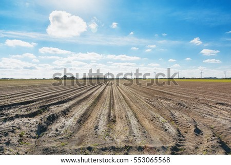 An empty field with markings prepared for planting.