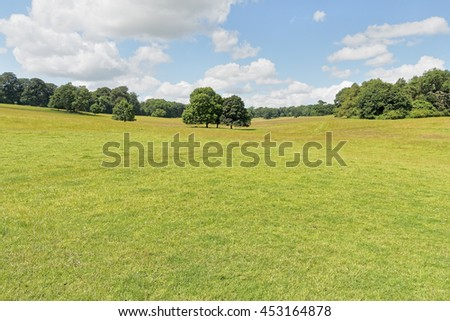An English countryside meadow scene under blues skies with light cloud