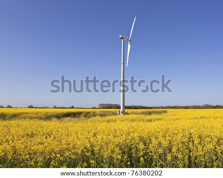 an english landscape with a small wind turbine in the middle of a field full of bright yellow oil seed rapeseed flowers under a blue sky - stock photo