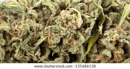 An extreme macro shot of a cannabis bud that had been grown by hydroponic process. - stock photo